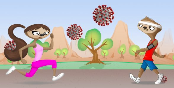 Social Distance The Sloth (covid-19): Will Exercise Suppress My Immune System?